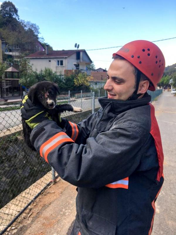 Derede mahsur kalan yavru dostumuzu kurtardık - Haberler - İstanbul İtfaiyesi