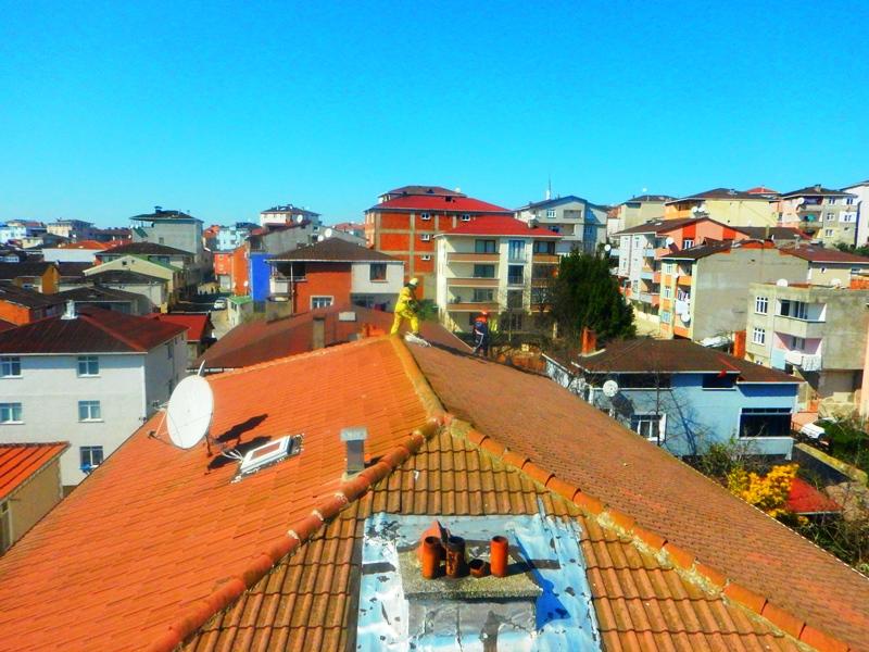 Sultanbeylide hayvan kurtarma  - Haberler - İstanbul İtfaiyesi