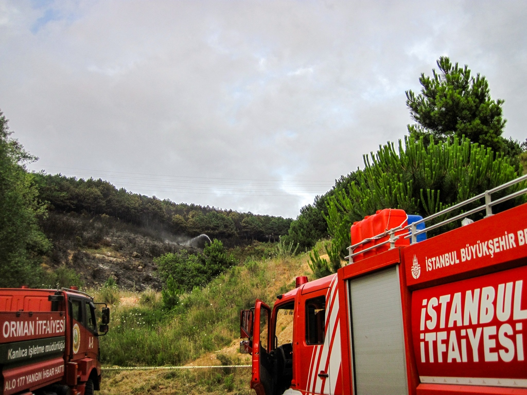 Kartalda orman yangını - Haberler - İstanbul İtfaiyesi