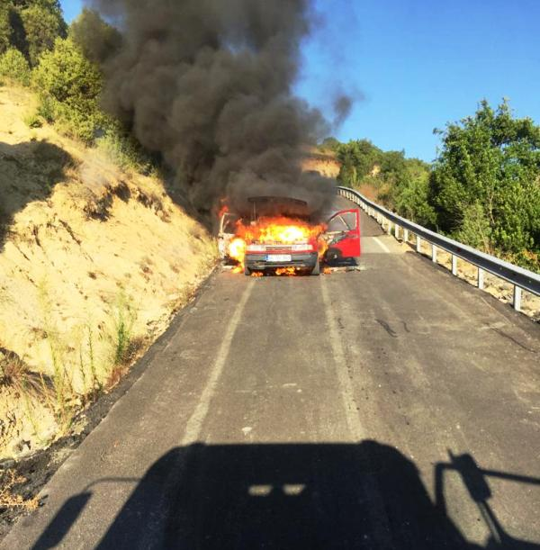 Vehicle fire in Şile - News - Istanbul Fire Department