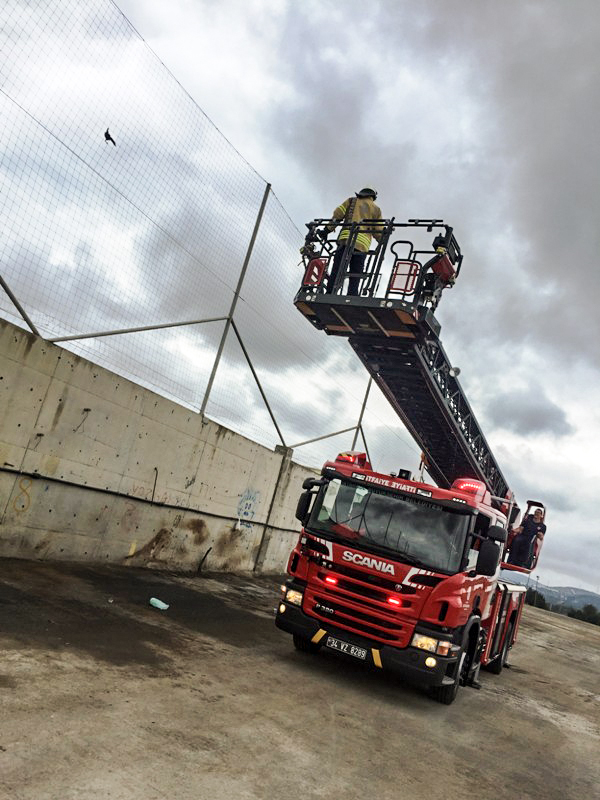 We saved the stuck crow - News - Istanbul Fire Department