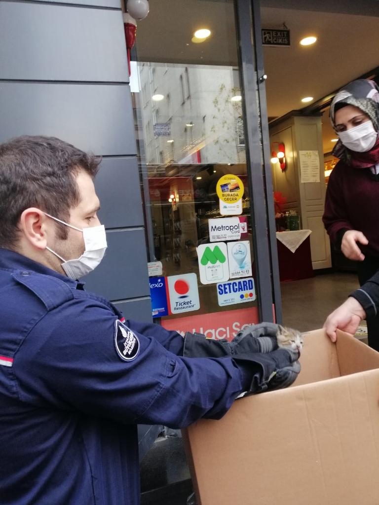 Bağcılarda hayvan kurtarma - Haberler - İstanbul İtfaiyesi
