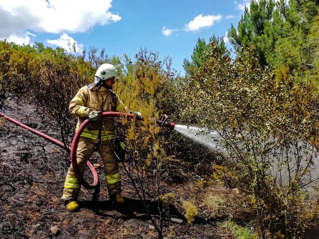 Yenişehirde orman yangını - Haberler - İstanbul İtfaiyesi