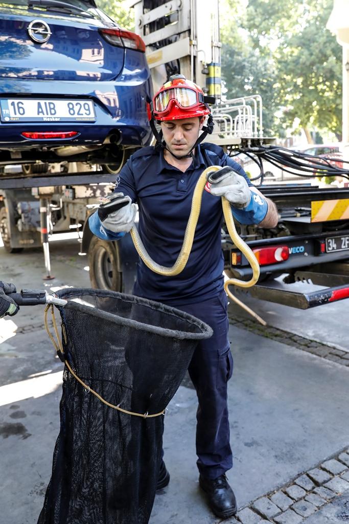 Araçta mahsur kalan yılanı kurtardık - Haberler - İstanbul İtfaiyesi